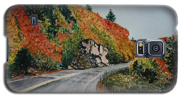 Galaxy S5 Case featuring the painting Fall Splendor by Betty-Anne McDonald