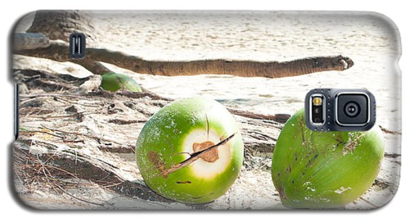 Fallen Coconuts Galaxy S5 Case by Hans Engbers