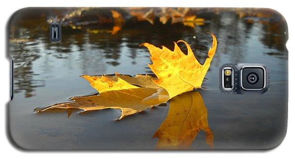 Fallen Maple Leaf Reflection Galaxy S5 Case