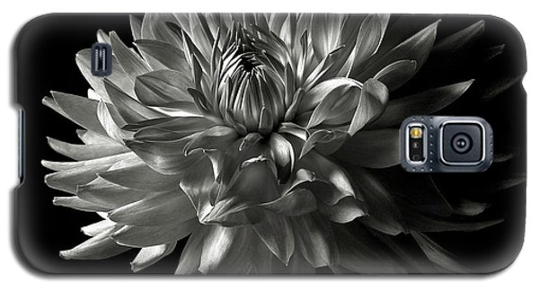 Fancy Dahlia In Black And White Galaxy S5 Case