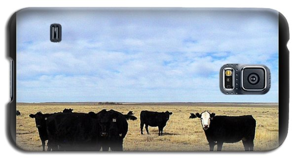 Galaxy S5 Case featuring the photograph Farm Friends by Clarice  Lakota