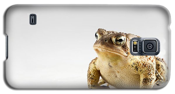 Fat Toad Galaxy S5 Case
