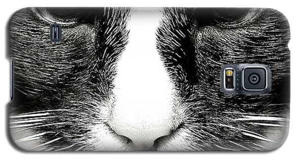 Fearless Feline Galaxy S5 Case