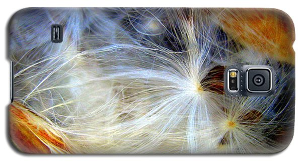 Galaxy S5 Case featuring the photograph Feathery Spider by Bruce Carpenter