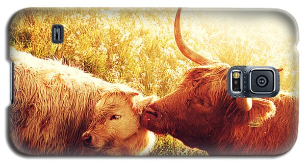 Fenella With Her Daughter. Highland Cows. Scotland Galaxy S5 Case