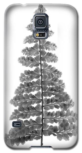 Fern Leaf Galaxy S5 Case