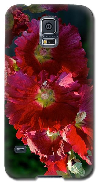 Galaxy S5 Case featuring the photograph Fertile by Joseph Yarbrough