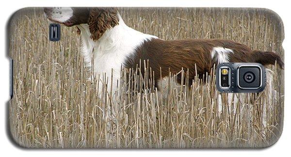 Field Bred Springer Spaniel Galaxy S5 Case