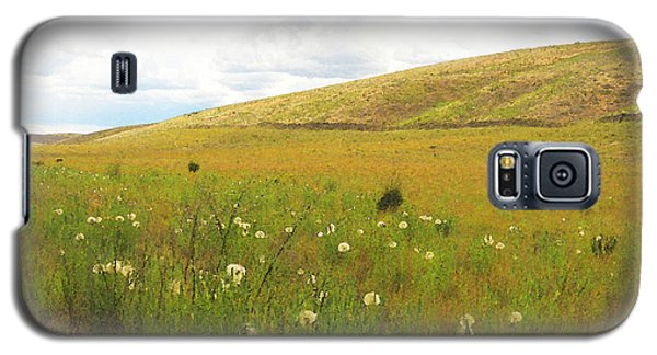 Galaxy S5 Case featuring the photograph Field Of Dandelions by Anne Mott