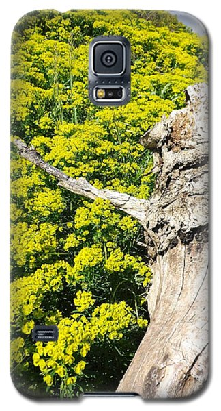 Field Of Flowers 1 Galaxy S5 Case by Gerald Strine