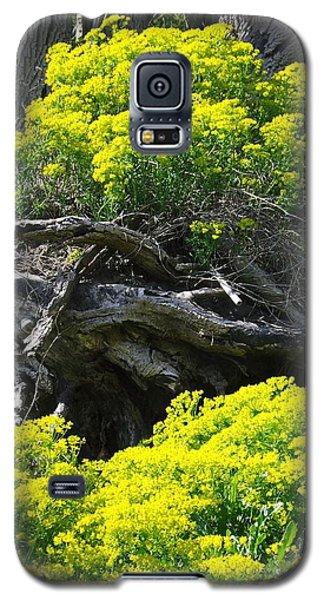 Field Of Flowers 2 Galaxy S5 Case by Gerald Strine