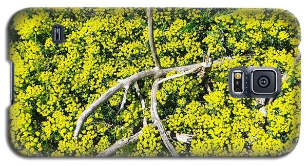 Field Of Flowers 3 Galaxy S5 Case by Gerald Strine