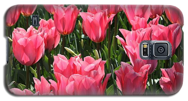 Field Of Pink Tulips Galaxy S5 Case by Marjorie Imbeau