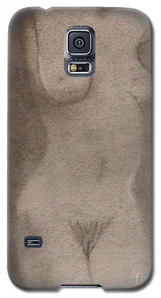 Figure 1 Galaxy S5 Case