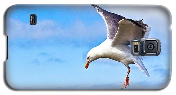 Final Approach - San Francisco Galaxy S5 Case