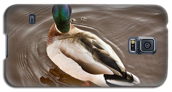 Fine Feathered Mallard Duck Galaxy S5 Case