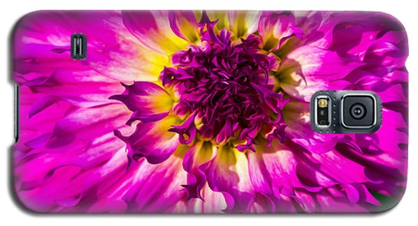 Galaxy S5 Case featuring the photograph Fire Fox by Ken Stanback