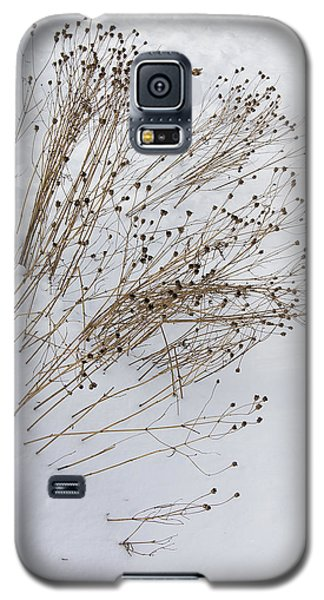 Galaxy S5 Case featuring the photograph First Snow by Michael Friedman
