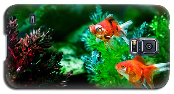 Galaxy S5 Case featuring the photograph Fish Tank by Matt Malloy