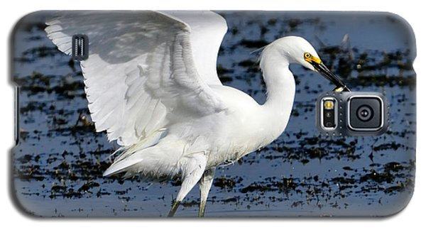 Fishing Dance Galaxy S5 Case