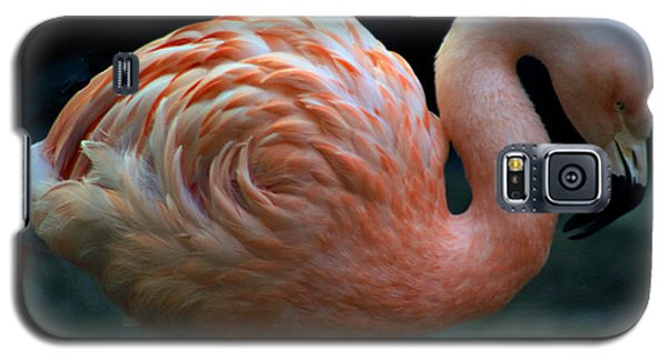 Galaxy S5 Case featuring the photograph Flamingo by Tammy Espino