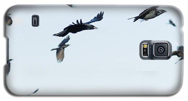 Flock Of Crows Galaxy S5 Case