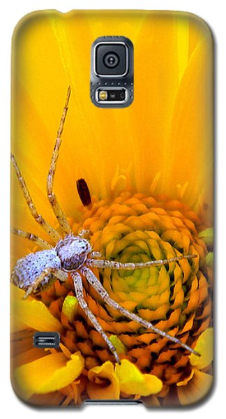 Floral Spider Galaxy S5 Case
