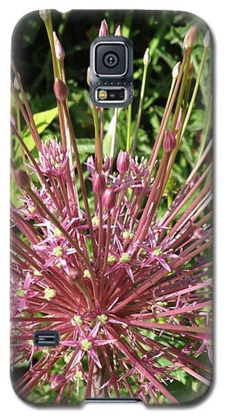 Floral Unique Galaxy S5 Case by Rebecca Overton