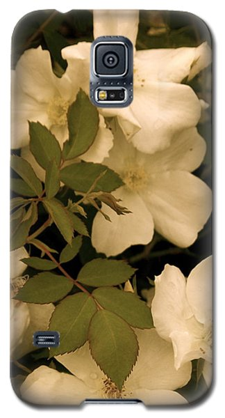 Galaxy S5 Case featuring the photograph Floral Vignette by Robin Regan