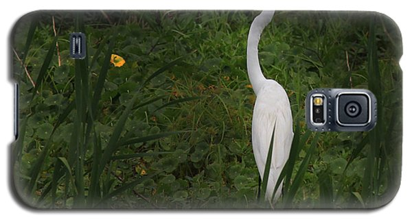 Florida Egret Galaxy S5 Case