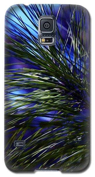Florida Grass Galaxy S5 Case