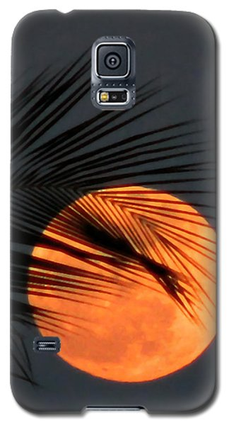 Florida Moonrise Galaxy S5 Case