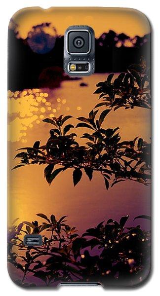 Florida Sunset Galaxy S5 Case