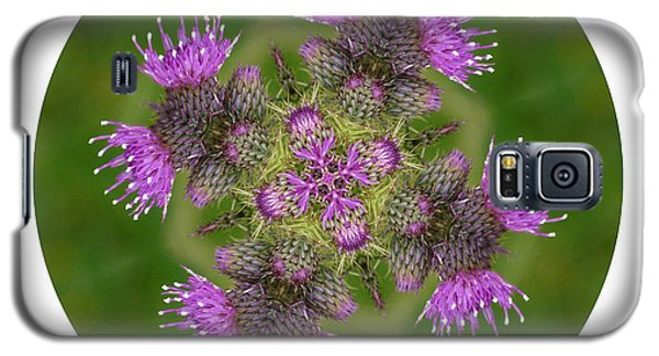 Galaxy S5 Case featuring the photograph Flower Of Scotland by Lynn Bolt