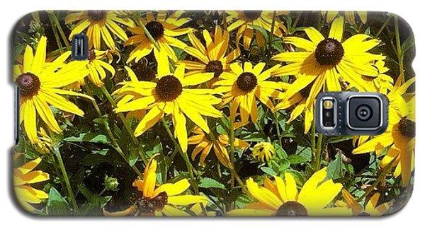 Bright Galaxy S5 Case - Flowers by Lea Ward