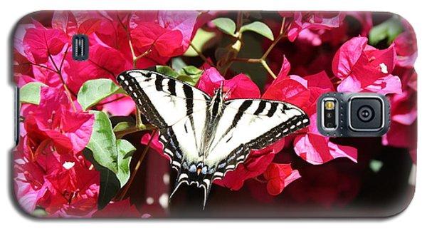 Flutter By Galaxy S5 Case