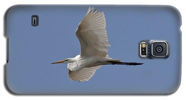 Flying Egret Galaxy S5 Case by Jeannette Hunt