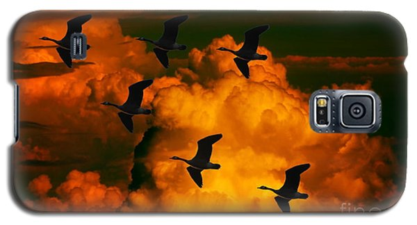 Flying High In The Sky Galaxy S5 Case by Marjorie Imbeau