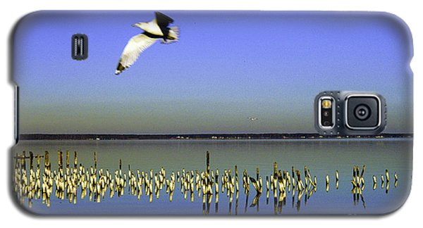 Galaxy S5 Case featuring the photograph Flying Solo by Clayton Bruster