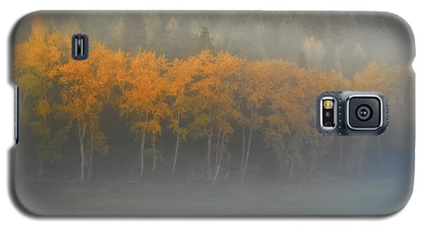 Galaxy S5 Case featuring the photograph Foggy Autumn Morning by Albert Seger