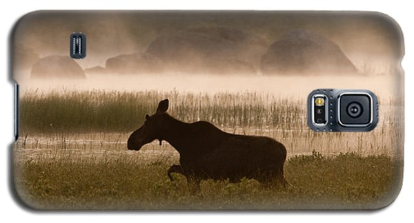 Foggy Stroll Galaxy S5 Case by Brent L Ander