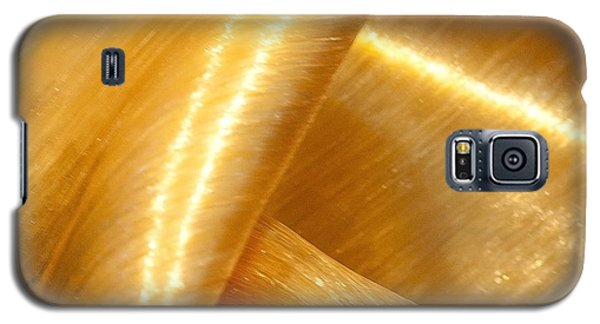 Folding Gold Galaxy S5 Case by Artist and Photographer Laura Wrede