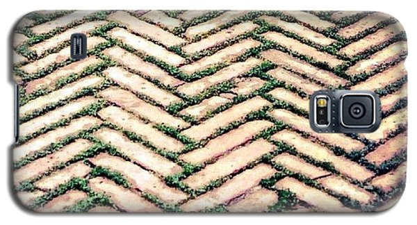 Detail Galaxy S5 Case - Follow The Path.. #path #way #wisdom by A Rey
