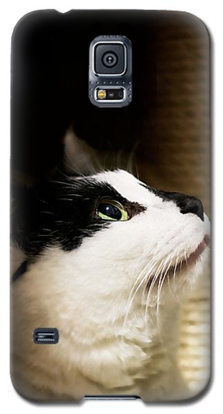 For Me Galaxy S5 Case by JM Photography