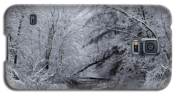 Galaxy S5 Case featuring the photograph Forest Lace by Christian Mattison