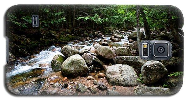 Forest Stream Galaxy S5 Case