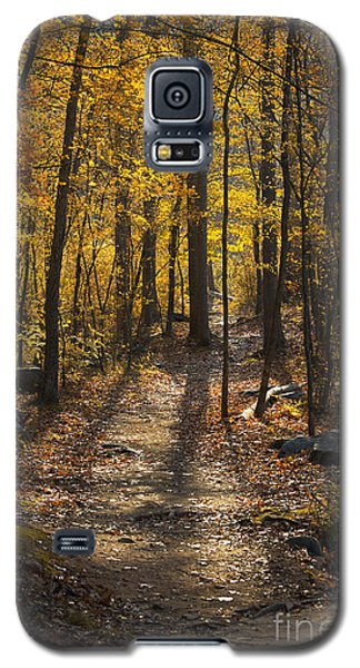 Forrest Of Gold Galaxy S5 Case