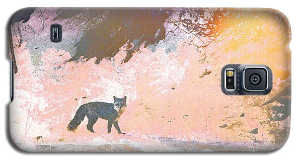 Galaxy S5 Case featuring the photograph Fox In The Forest 2 by Lenore Senior and Tammy Sutherland