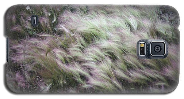 Foxtail Barley And Campion Galaxy S5 Case