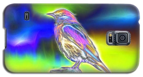 Fractal - Colorful - Western Bluebird Galaxy S5 Case